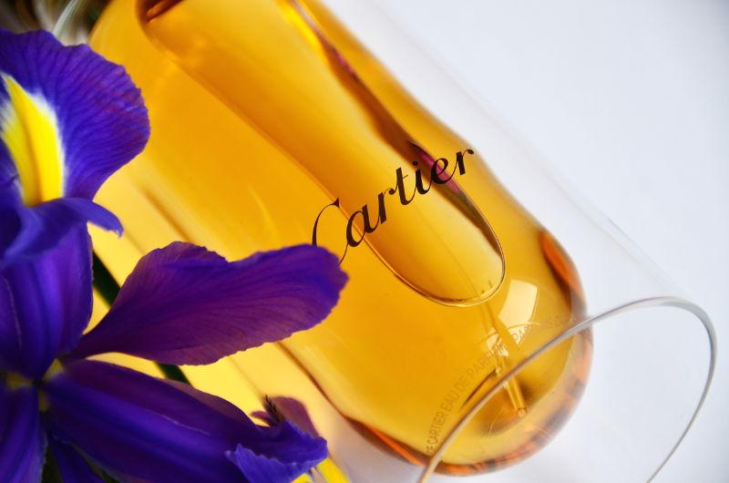 Cartier L'Envol recenzja