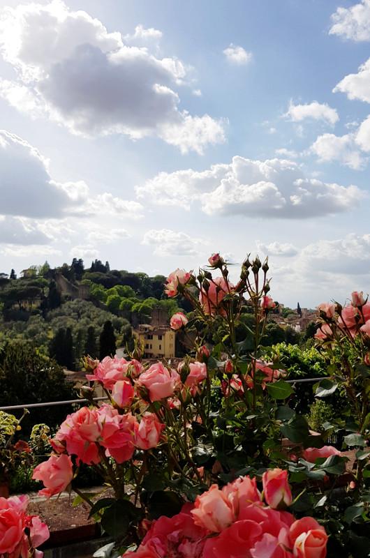 Florencja ogród różany